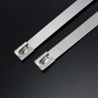 白钢自锁式不锈钢扎带