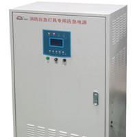 应急电源(0.5KW)