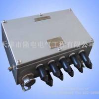 LD-FBJX系列防爆接线箱(iaⅡC)