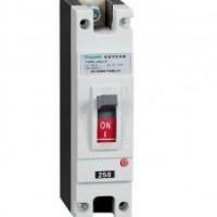 YDM1-250电摩专用塑壳断路器