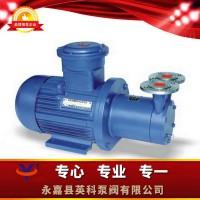 CWB磁力传动旋涡泵