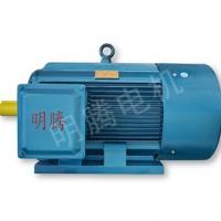 TYCX系列低压超高效三相永磁同步电动机