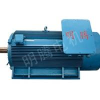 TYCX系列低压大功率超高效三相永磁同步电动机