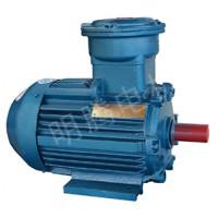 TYBCX系列厂用隔爆型低压超高效三相永磁同步电动机