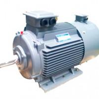 YVFE2系列高效率变频调速三相异步电机